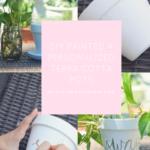 DIY Terracotta Pots - Personalized Pots!