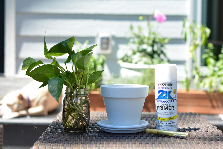 DIY Terra Cotta Pots - plant, pot and spray paint