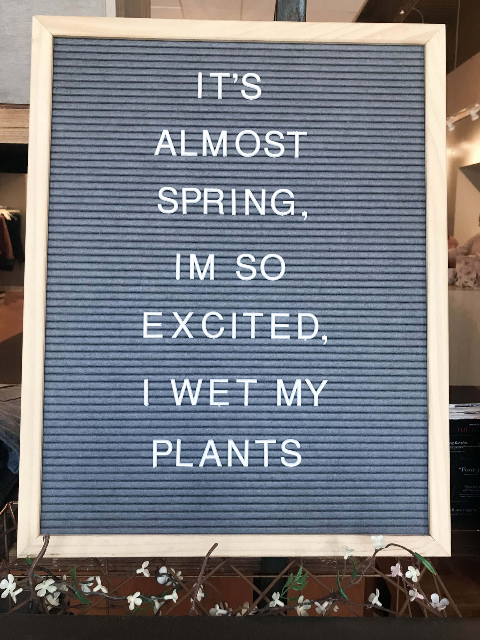 It's almost spring, I'm so excited I wet my plants.