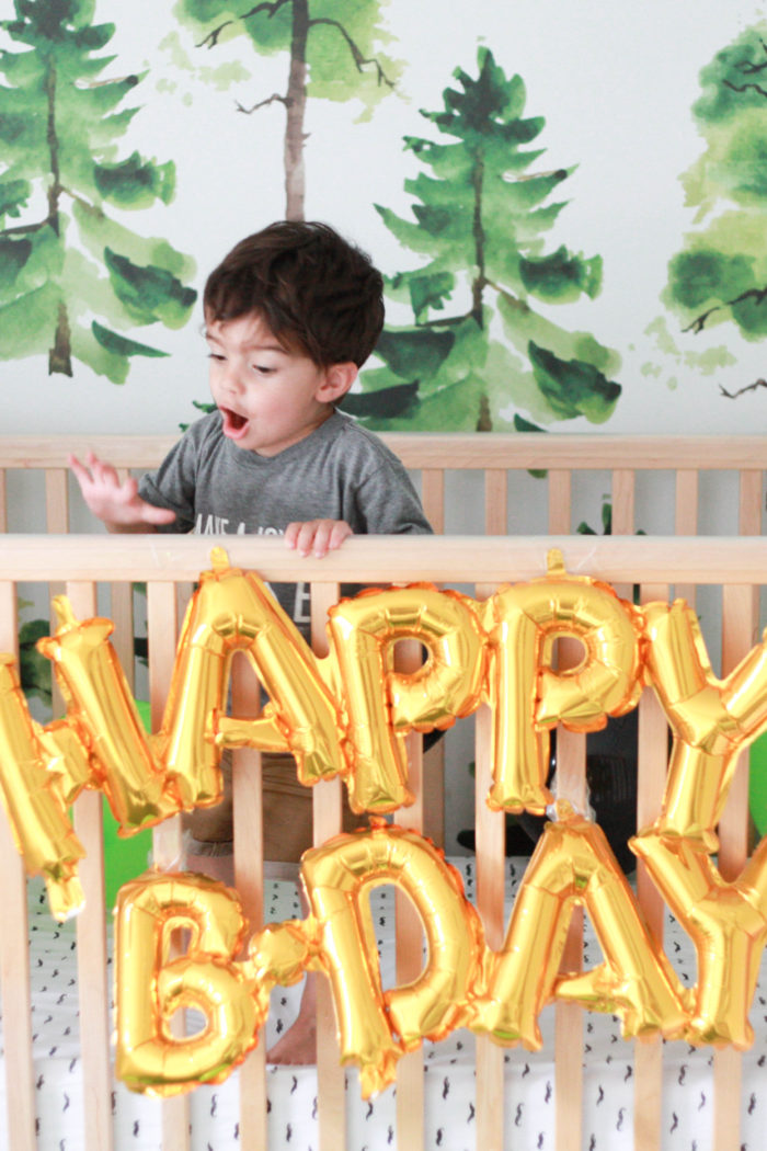 5 Inexpensive Ideas for Celebrating Your 2 Year Old's Birthday
