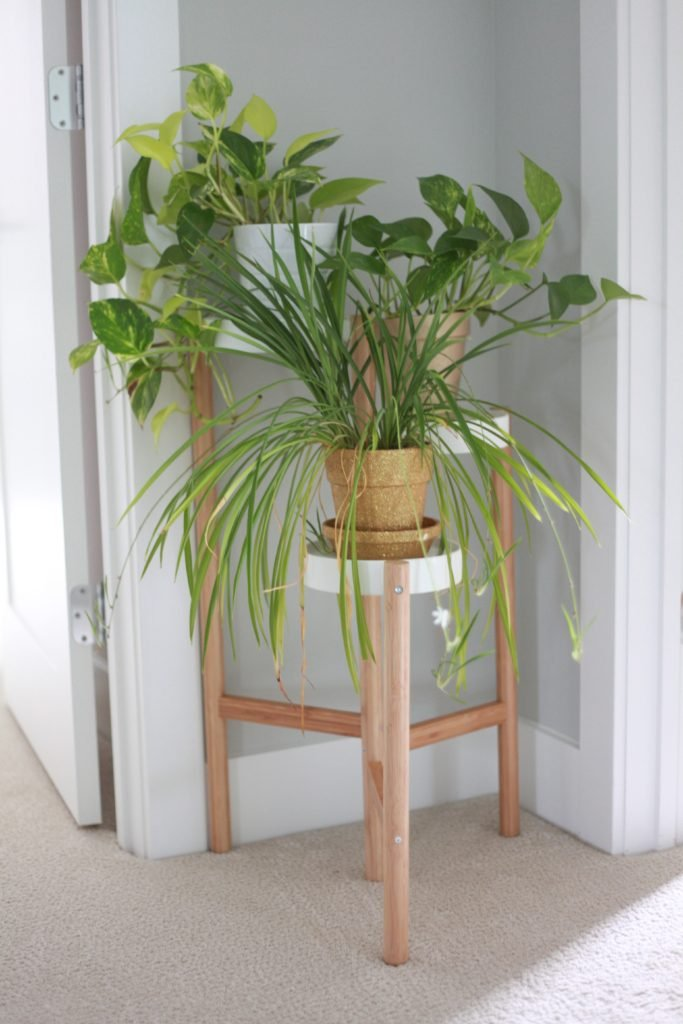 Super inexpensive 3 tier plant stand to show off multiple plants