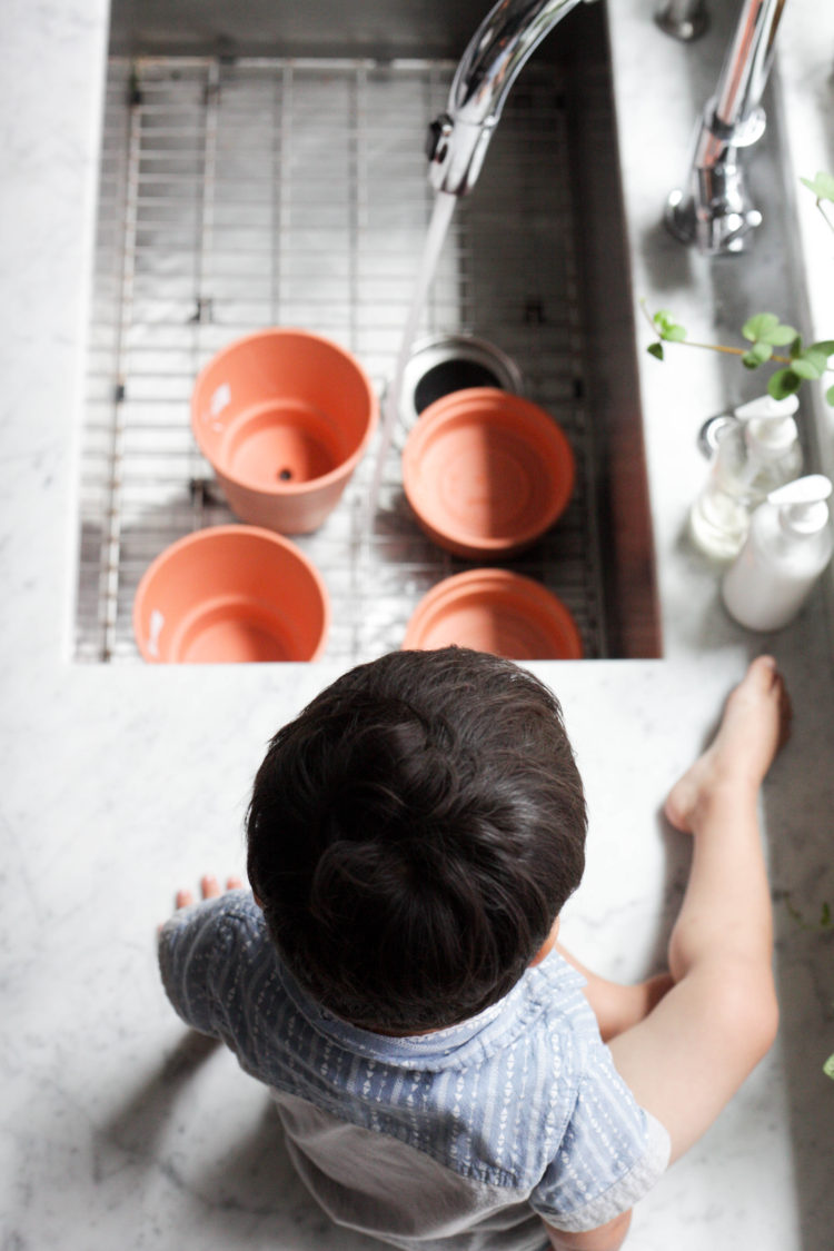 3 Key Tips for Using Terracotta Pots