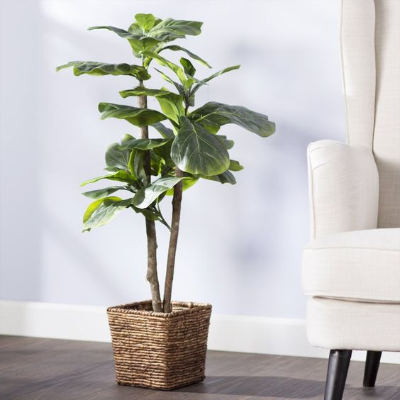 Boho Home Decor - faux plant perfect for the newbie plant person!