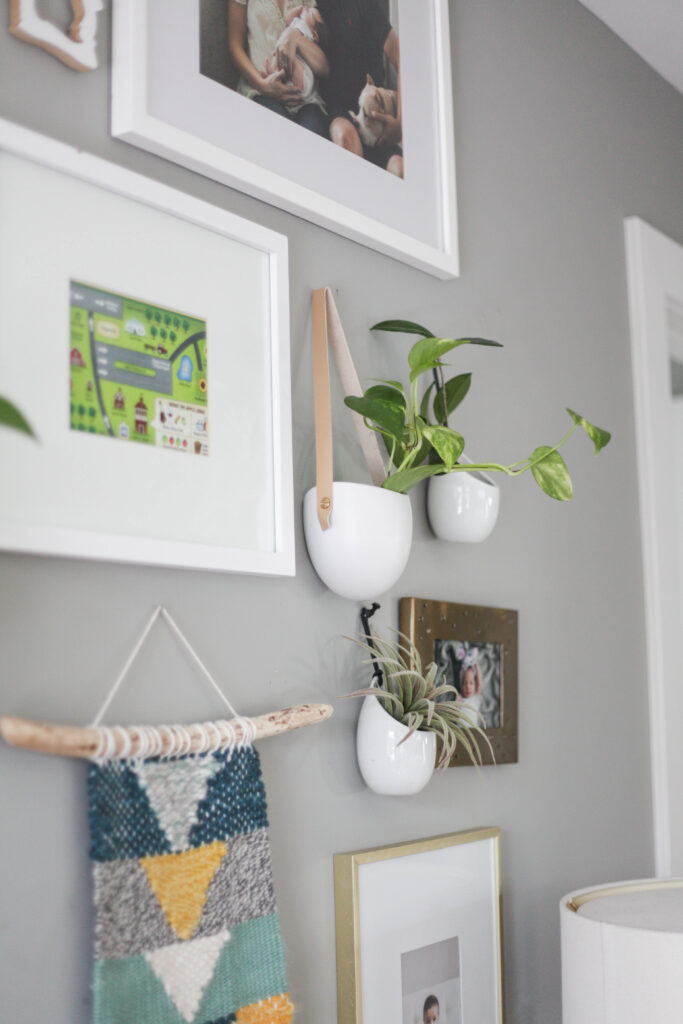 Hanging wall plants as part of a gallery wall