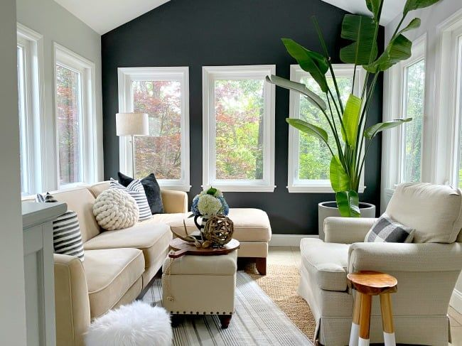 Solid Color Painted Accent Wall