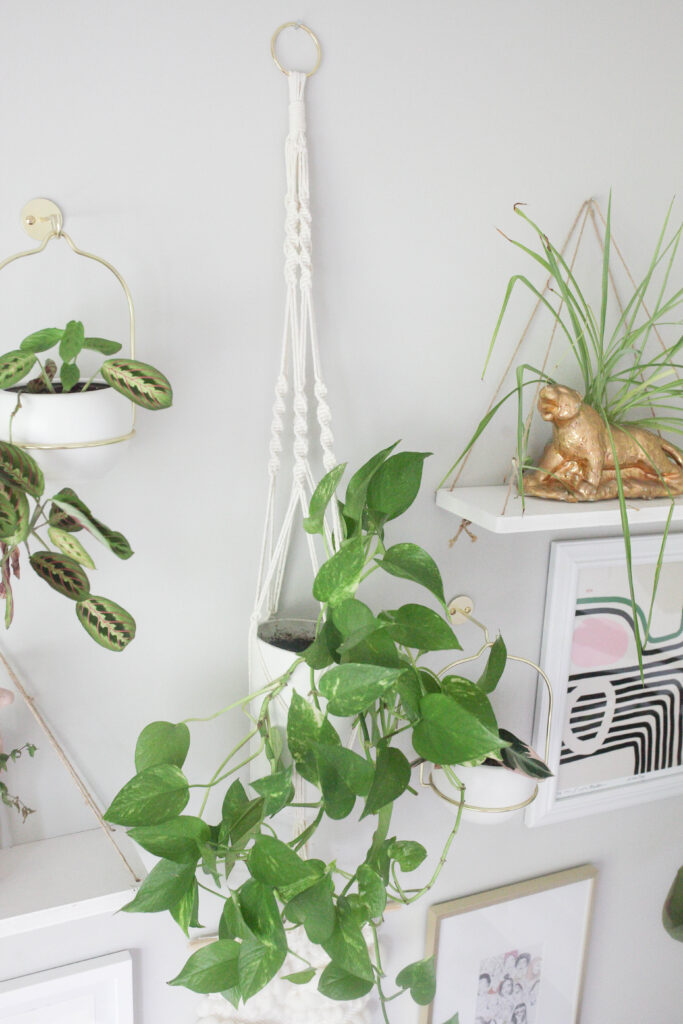 Easy DIY macrame plant hanger with video tutorial