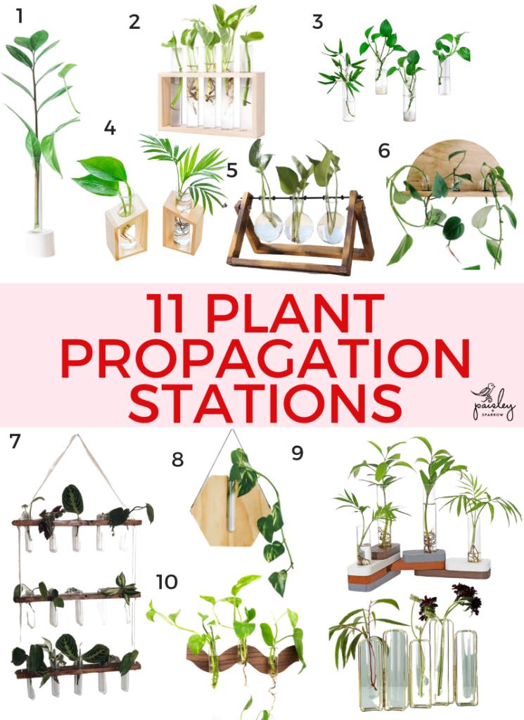 11 Plant Propagation Stations